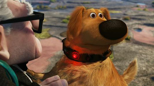 dogup